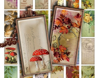 "75% OFF SALE Digital collage sheet Autumn 1x2"" Domino Image PR018 Printable Download 1x2 inch Rectangle Glass Pendant Resin Digital Image"