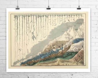 Antique world map etsy worlds tallest mountains longest rivers antique world map rolled canvas giclee print 32x24 inches gumiabroncs Gallery