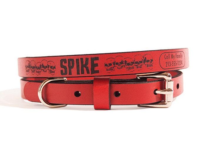 ID DOG COLLAR - Small - Spike Design - Custom Leather