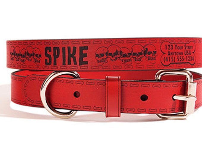 Leather ID Dog Collar, Medium Size, Spike Design, Personalized Name & Contact Info Engraved FREE