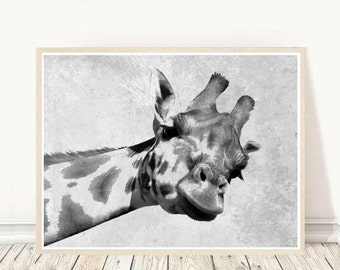 Animal Print, Giraffe Photo, Giraffe Print, Art Print, Printable Art, Black And White Giraffe,  Wall Decor, Wall Art, Digital Download