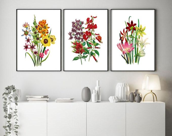 Interior Flower Prints - Set of 3 Flower Prints - Red Flower Decor - Kitchen Decor WBOT114-WBOT116