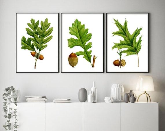 Botanical Leaves Set of 3 Botanical Prints Natural Illustration Acorn Prints Oak Tree Leaf Green Prints Green Decor Leaf Decor WBOT47-48-49