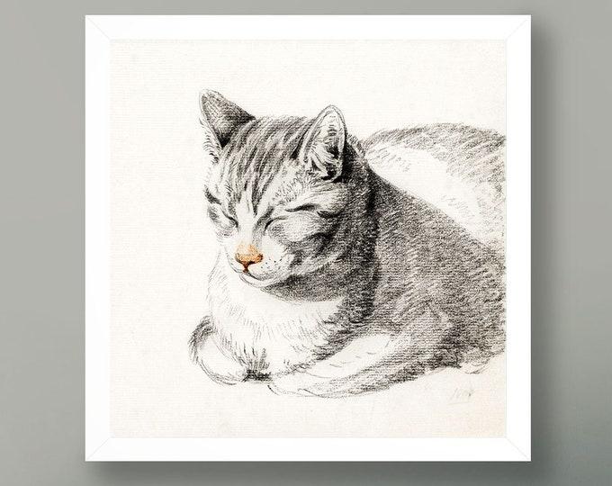 Cat Illustration Vintage Cat Poster Square Cat Art