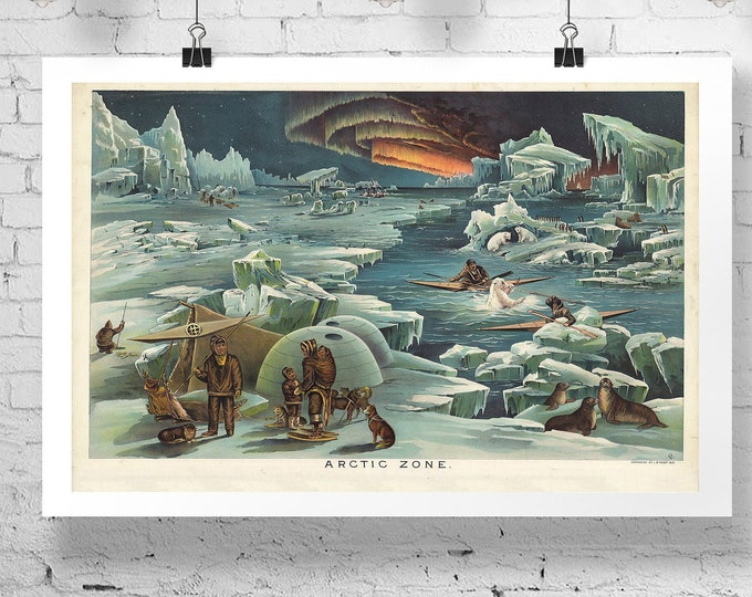 Arctic Poster Arctic Illustration Vintage Style North Pole Decor