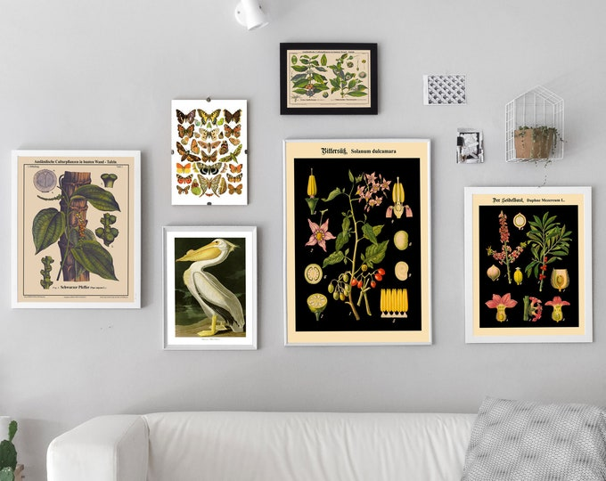Gallery Print Set of 6 Ready to Frame Gallery Wall Prints