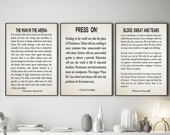 The Man in the Arena Roosevelt Press On by Calvin Coolidge Churchill Blood, Sweat & Tears Set of 3