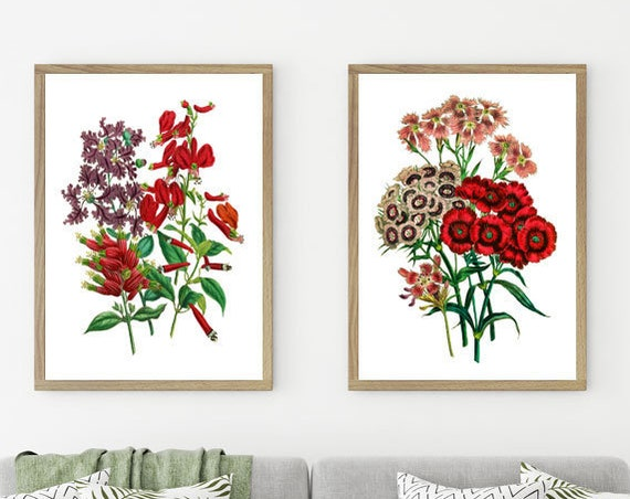 Botanical Posters Set of 2 Botanical Prints Botanical Wall Art Botanical Art Flower Decor Flowers Posters Flower Prints Red Art WBOT115-116