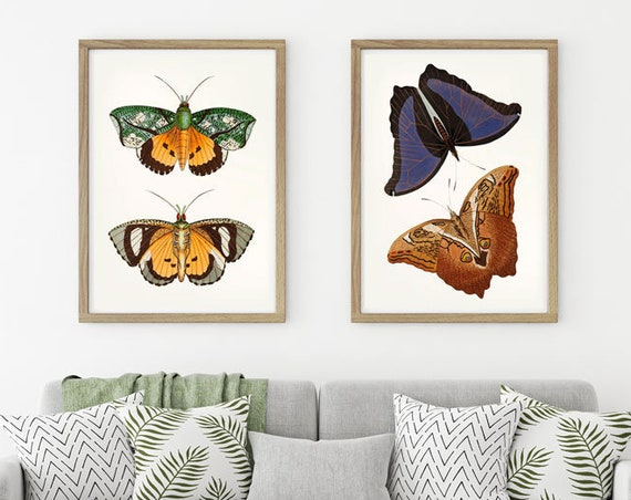 Butterfly Print Set of 2 Butterfly Illustration Butterfly Watercolor Moth Wall Art Butterfly Wall Art Giant Owl Butterflies Butterfly Decor