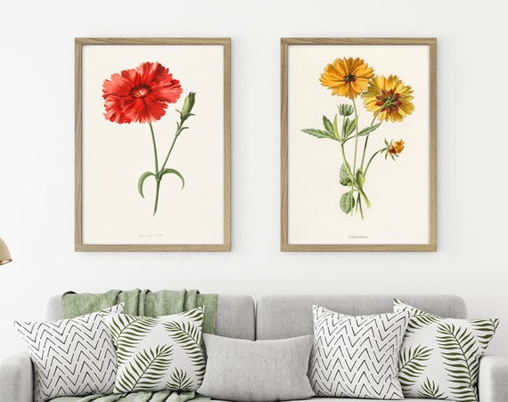 Flower Prints Set of 2 Vintage Flower Posters Flower Wall Art Coreopsis and Indian Pink Flower Red Flower Yellow Flower Art Flower Decor