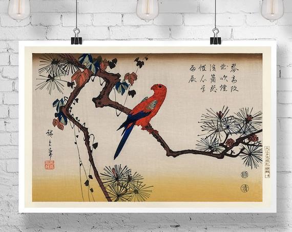 Woodblock Print by Utagawa Hiroshige Print Japanese Wall Art Japanese Print Japanese Poster Japanese Ukiyo-e illustration Macaw on Pine