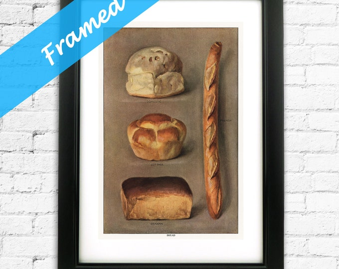 Baking Gift for Baker Framed Vintage Bread Types Kitchen Art ready to Hang
