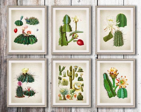 Cactus Prints Set of 6 Cactus Prints Cacti Prints Cactus Poster Cactus Wall Art Succulent Decor Succulent Wall Art Botanical WBOT15-WBOT20