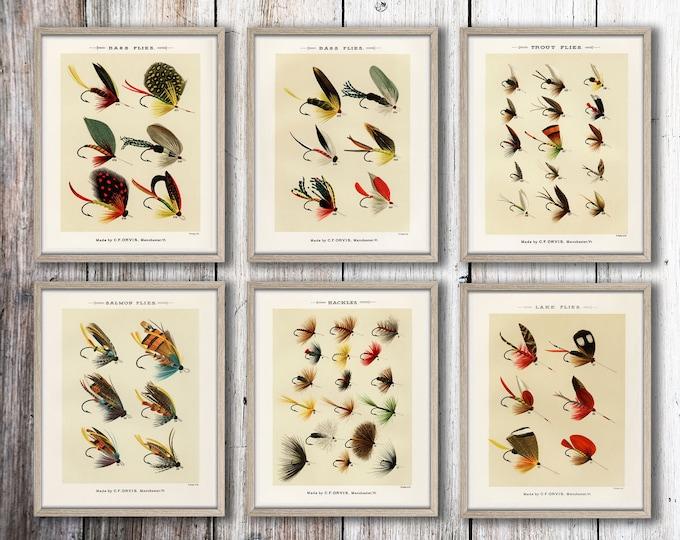 Fishing Decor Fishing Gift Set of 6 Fishing Fly Prints Marine Prints Trout Sea Bass Salmon Fishing Wall Art Fisherman Gift Fisherman Print