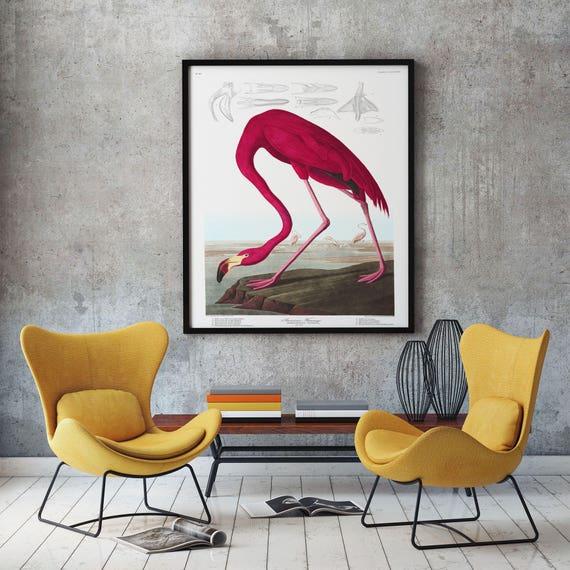 Flamingo Illustration Flamingo Print by John James Audubon Birds of America Wildlife Drawings Audubon Bird Print Nature Wall Art Bird Art