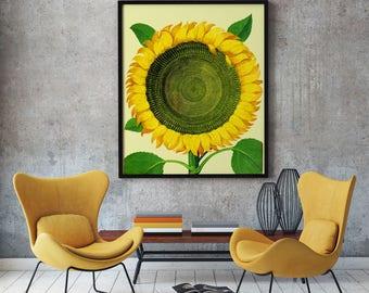 Sun Flower Art Large Botanical Poster of Flower Poster Decor Flower Decor  Flower Wall Art Botanical Print Botanical Wall Art Botanical Art