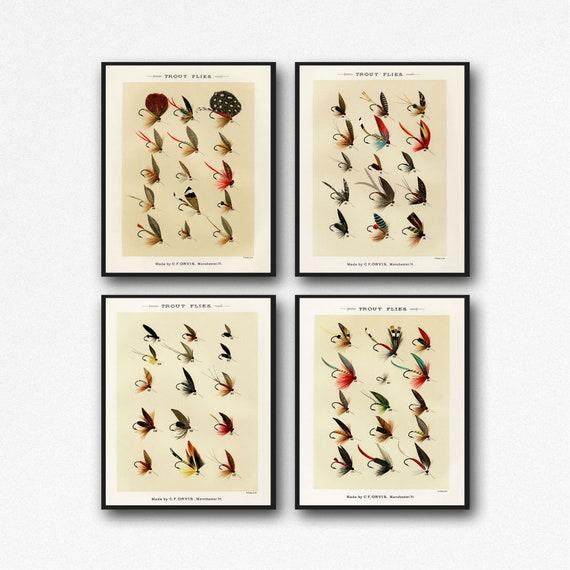 Trout Fishing Flies Set of 4 Fishing Prints Fishing Decor