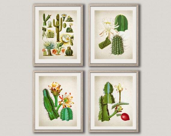 Cactus Wall Art Cactus Print Cactus Print Cactus Poster Cactus Botanical Print Set of 4 Cactus Prints Botanical Poster WBOT15-WBOT18