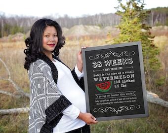Pregnancy Chalkboard Sign, Bi-Weekly Pregnancy Countdown Chalkboard Photo Prop, Baby is the size of, Set of 17 16x20, Pregnancy signs