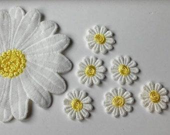 Flowerand Art S