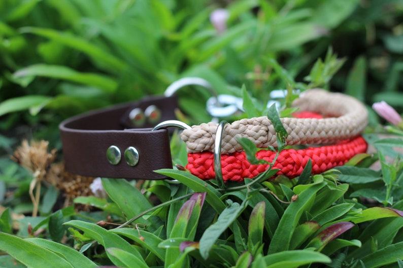 Wild Ferns Collection  Red desert collar