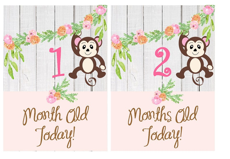 graphic regarding Printable Baby Month Signs named Printable child milestone playing cards, safari Youngster lady milestone playing cards, Jungle youngster Thirty day period through Thirty day period child age indication, Monkey boy or girl playing cards Printable