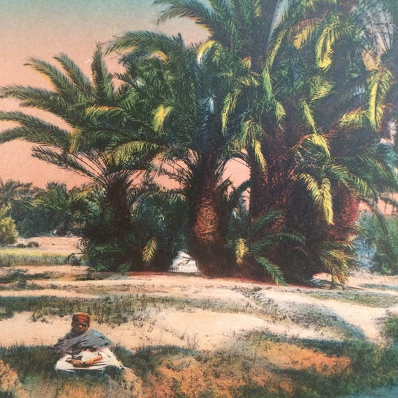 North African Oasis Scene Circa 1920 Hand Colored French Etsy