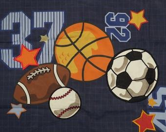 Fun Sports standard pillow sham