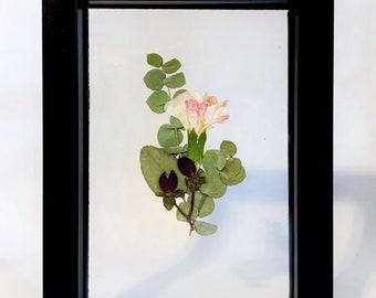 Pressed and Framed Wedding Flowers, Custom Wedding Flower Art, Wedding Memento, Pressed Flower Art, Wedding Flowers, 5x7, Framed Boutonnière