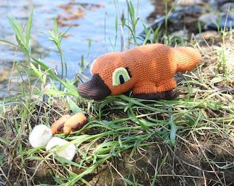 Portia the Pregnant Platypus
