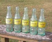 Set of 5 Nu-Grape Bottles Nashville, TN, Bowling Green, KY 1940 39 s