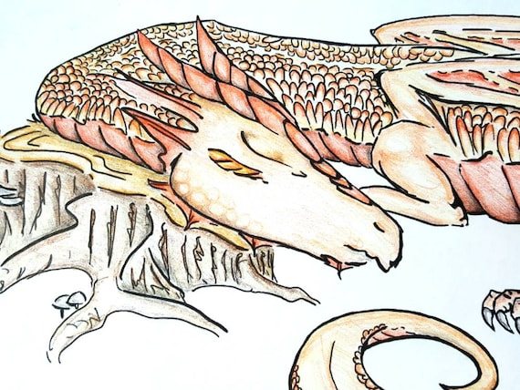 Copper Dragon Coloring Page / Adult Coloring Pages / Printable Etsy
