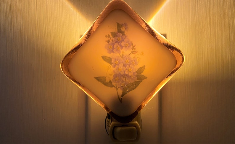 Forget-me-nots Night light wall plug in housewarming flower wild nature mountain nursery beautiful all occastion gift