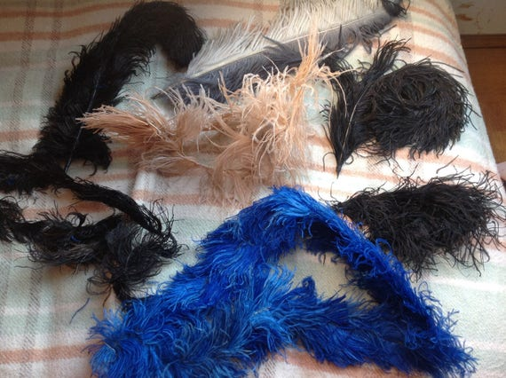 Beautiful antique Ostrich feathers