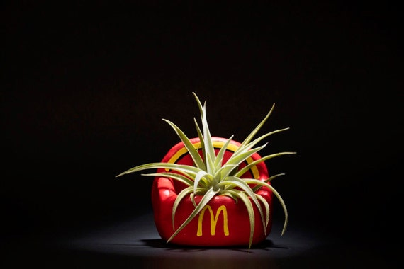 MCDONALDS FRIES PLANTER
