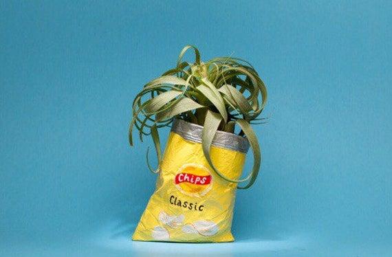 LAYS CHIP BAG planter