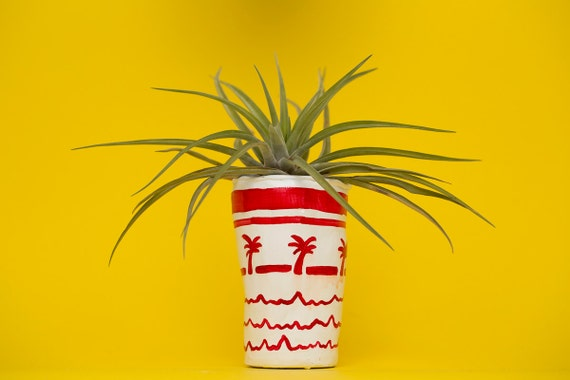 IN.N.OUT cup planter