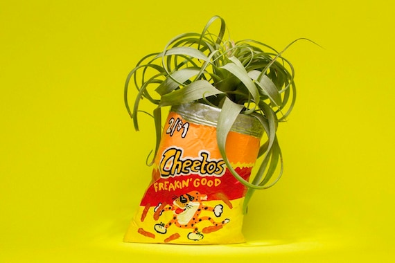 CHEETOS PLANTER