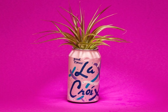 BERRY LA CROIX planter