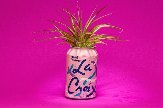 BERRY LA CROIX planter