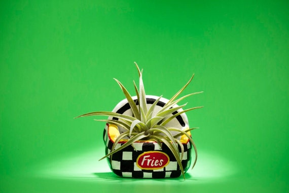 CHECKERS FRIES PLANTER