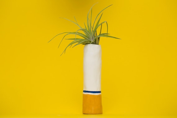 CIGARETTE PLANTER
