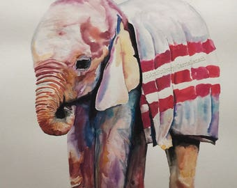 Baby Elephant Wearing a Blanket Watercolor Painting