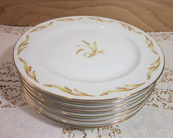 Set of Eight (8) Abalone China Dinner Plates in Golden Grain Patern 526 Japan * Fine Bone China Dinner Plates Made in Japan & China dinner plates   Etsy