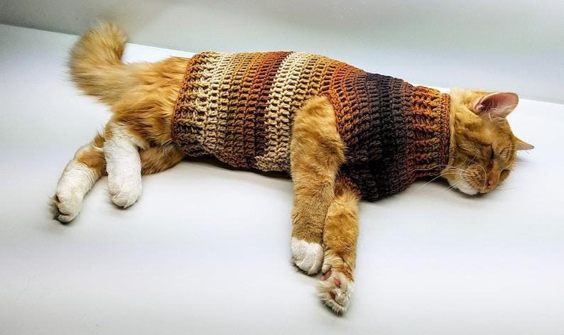 Crochet Cat Sweater Stevens Striped Sweater Crochet Pattern image 0
