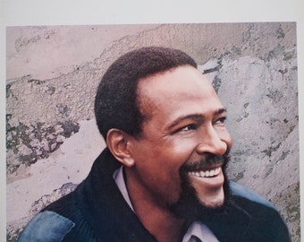 "Marvin Gaye - ""Dream of a Lifetime"" vinyl"