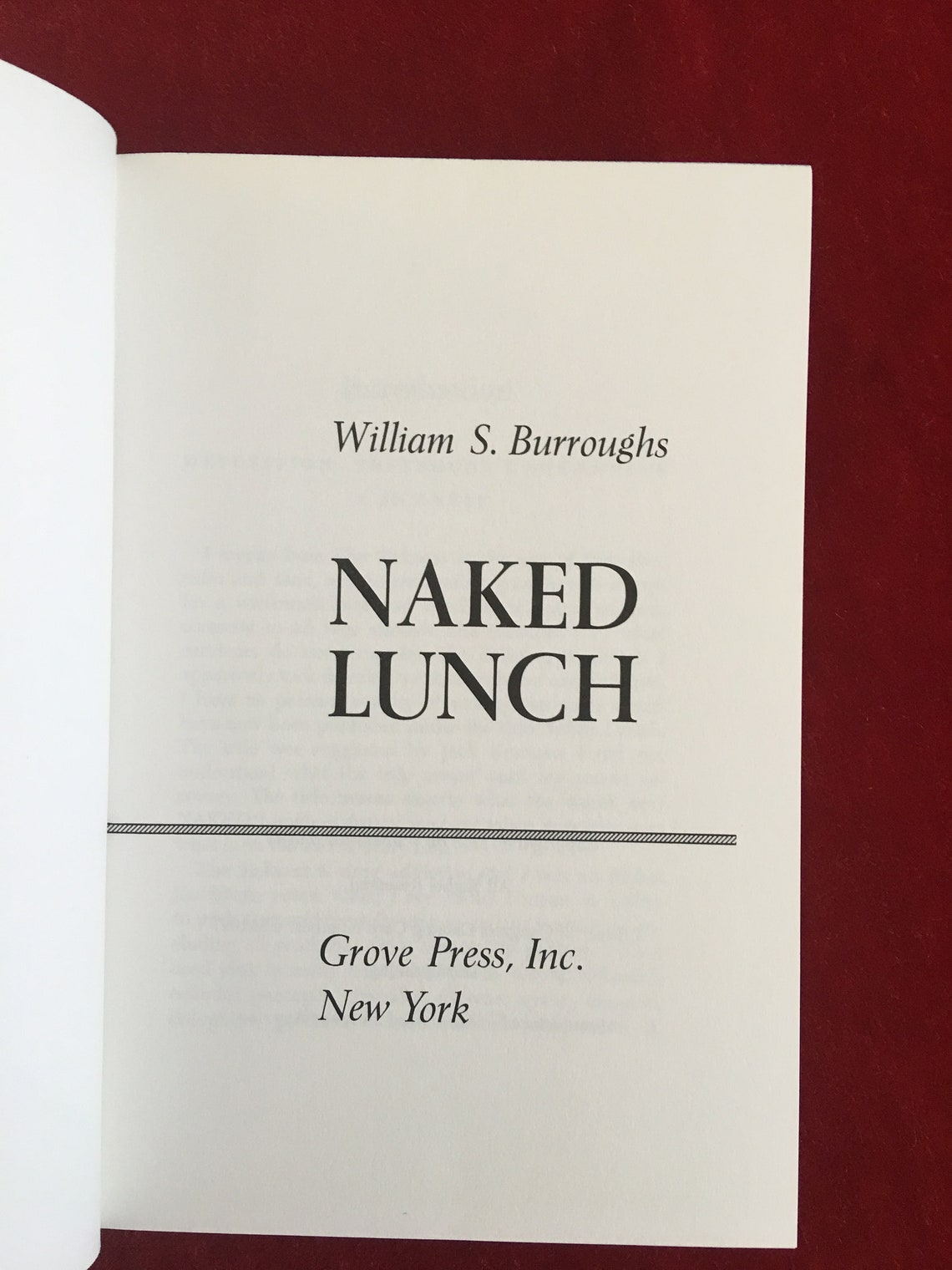 Naked Lunch by William Burroughs-1959 1st Edition Third   Etsy