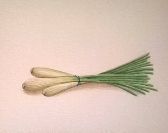 Lemongrass Original Watercolor 6x8