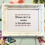 FRAMED finished completed cross stitch bitch please don't do cocaine in the bathroom, funny snarky subversive needlepoint embroidery