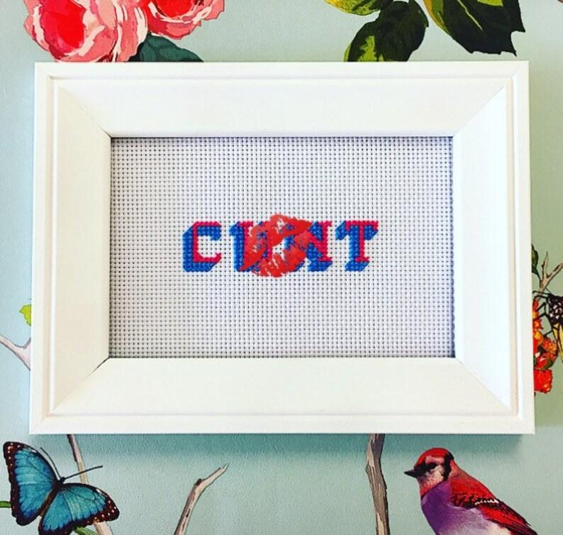 MATURE framed & finished funny rude subversive cross stitch image 0